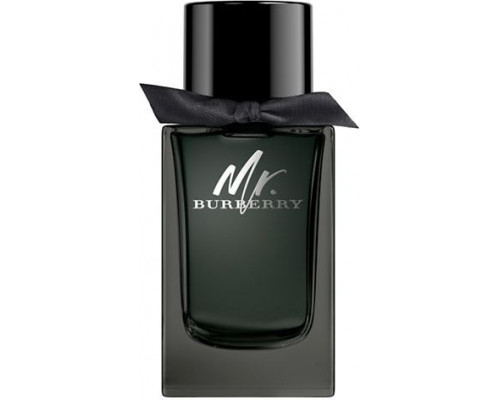 Burberry Mr. Burberry for Men EDP 150ml