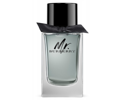 Burberry Mr. Burberry EDT 100ml