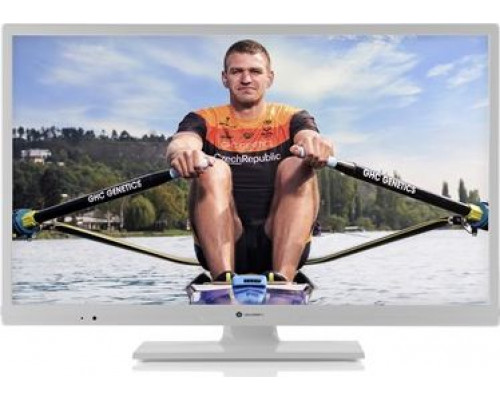 Gogen 24R540 LED 24 '' HD Ready TV
